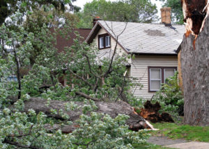 Wind Damage Public Adjuster - ProFloridian