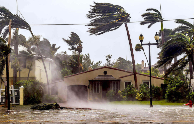 ProFloridian - Hurricane Damage Public Adjuster