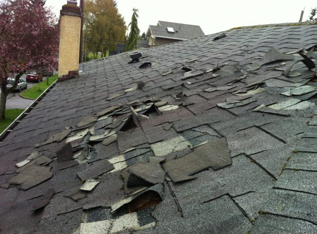 ProFloridian - Roof Damage Public Adjuster