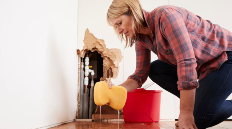ProFloridian - Water Damage Public Adjuster
