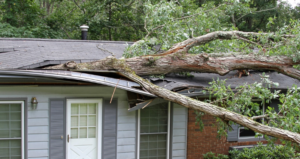 Tree fall on a roof causing roof damage to a homeowner